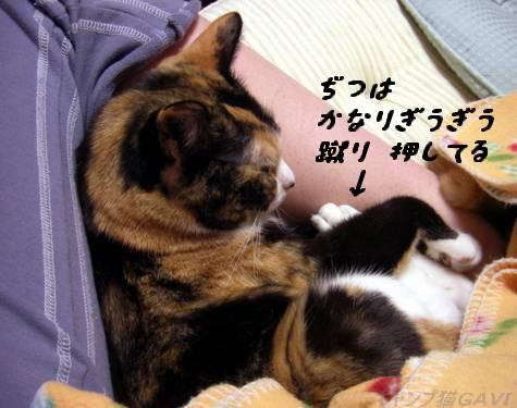 090125_CIMG6652.jpg