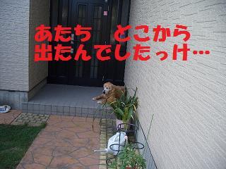 201106283.jpg