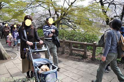 kichijoji12.jpg