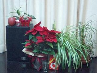 お部屋にクリスマス