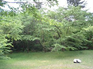 丸小山公園
