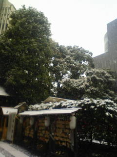 ON AIR#1489 祝福の雪