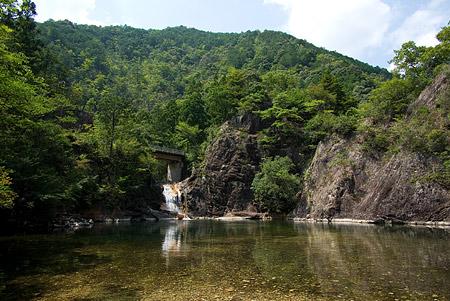 愛知県民の森2-8