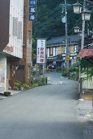 愛知県民の森5-10