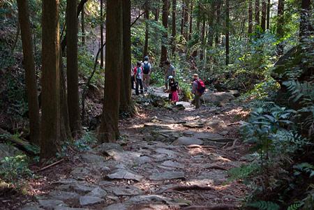 熊野古道4-11