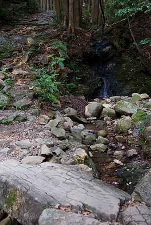 熊野古道4-12