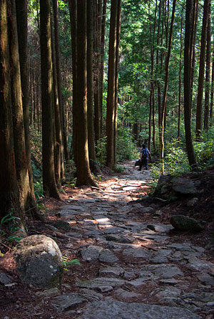 熊野古道4-9