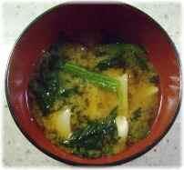 Oisix (おいしっくす)小松菜のお味噌汁
