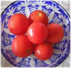 Oisix (オイシックス) みつトマト