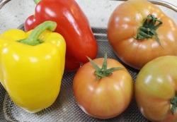 農家とダイレクト(カラーピーマン&トマト)