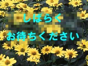 20060614.jpg