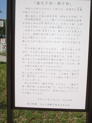 s-039.jpg