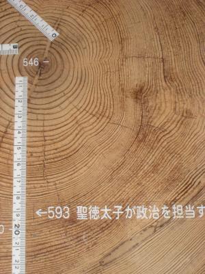 森林総研:縄文杉2