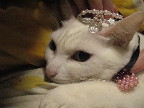 ぐったり姫