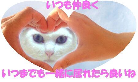 当たり前の毎日が幸せです(*^_^*)